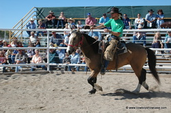 Riverton wild horse sale