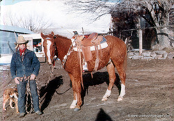 Benny Damele and a curly saddle horse