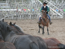 Wally Blossom and Blossom Rodeo Horses