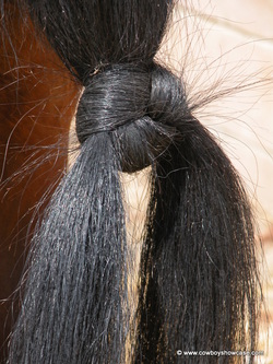 Horse tail knot