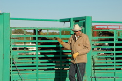Mike Buchanan-Wild Horse Supervisor